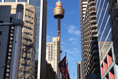 Sydney Tower を上る、チャリティー・イベント!