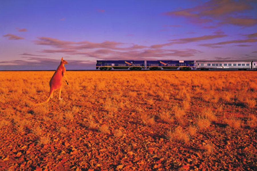 オーストラリア大陸を横断・縦断には、世界でも有数の魅力的な鉄道を使おう!