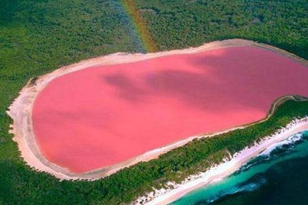 ピンク 湖 西オーストラリア
