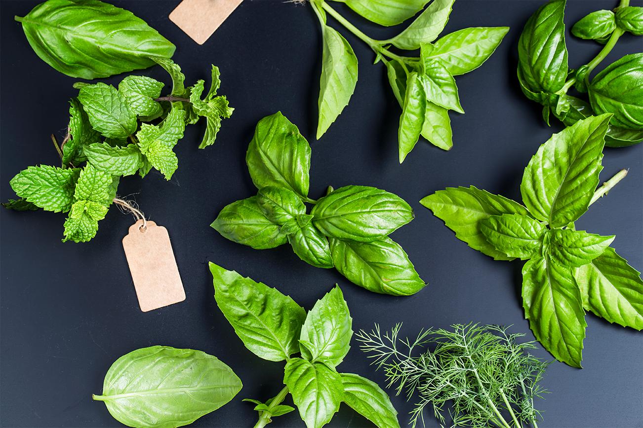 海外に植物や野菜を送る