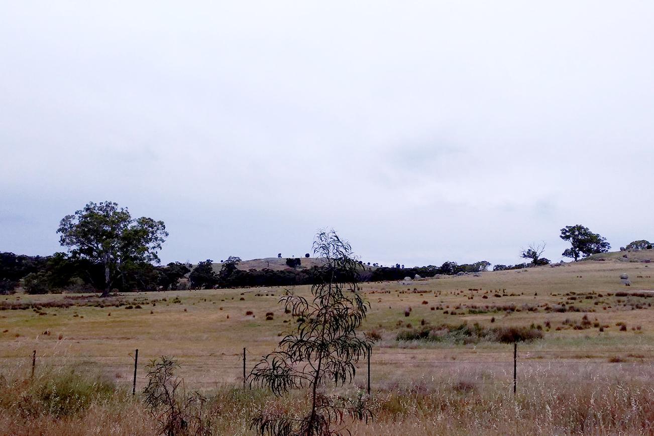 オーストラリアの大自然を車で走る