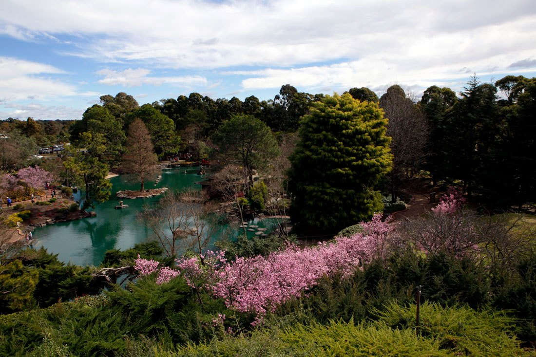 シドニーの日本庭園