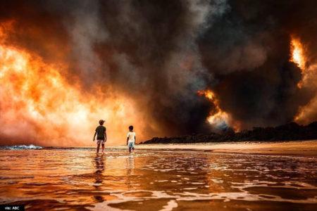 オーストラリアの森林火災に私たちが出来ること